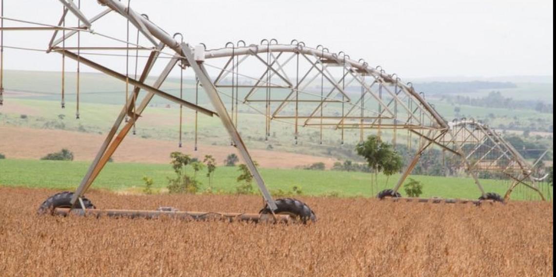 Produção de soja em Goiás